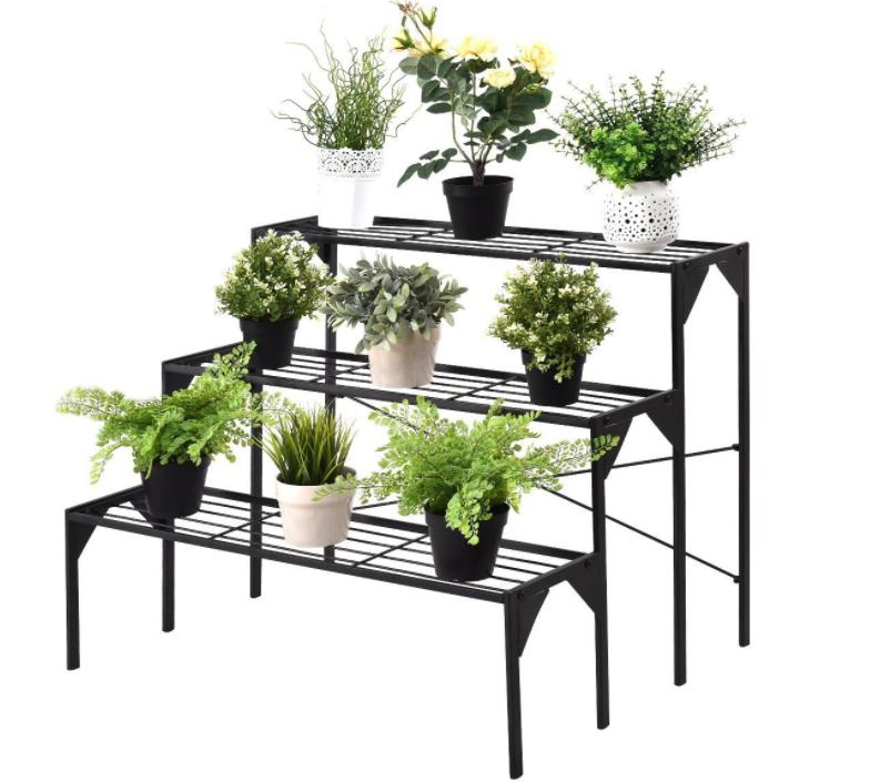 植物展示架
